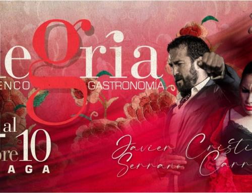 Flamenco Málaga – Programming from 4 to 11 October